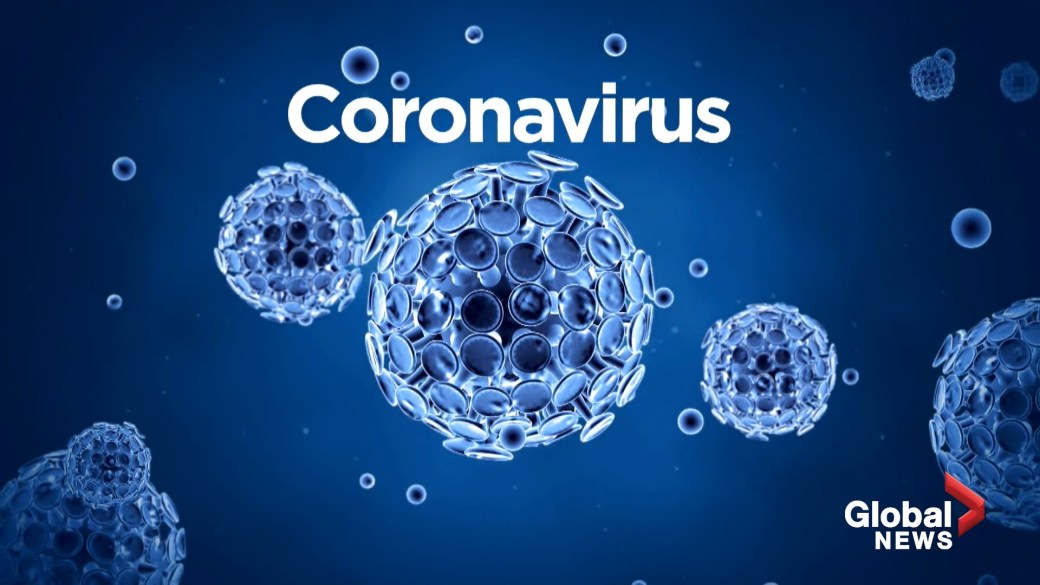 Coronavirus: Where did it come from and how did we get here?