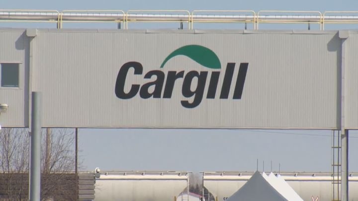 Cargill meat plant in High River, Alta., 'idles' processes amid coronavirus outbreak