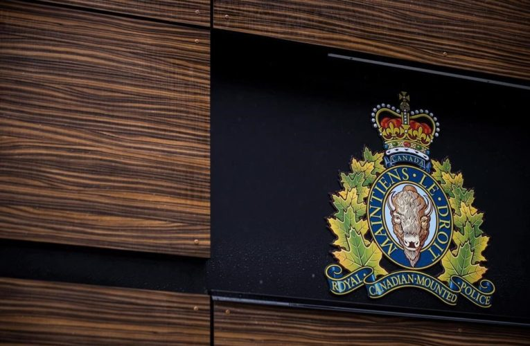 Two arrested in Surrey, B.C., in connection to $33,000 in stolen CERB cheques, refunds