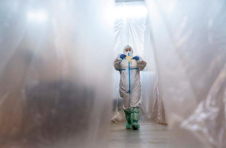 Coronavirus infections top 5 million worldwide