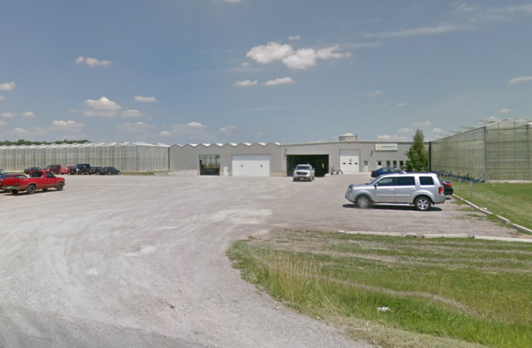 Testing underway after 8 migrant workers at Elgin County farm test positive for coronavirus