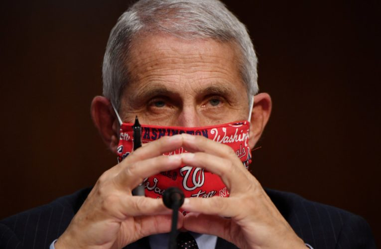 Fauci to testify next week on House investigation into U.S. coronavirus response