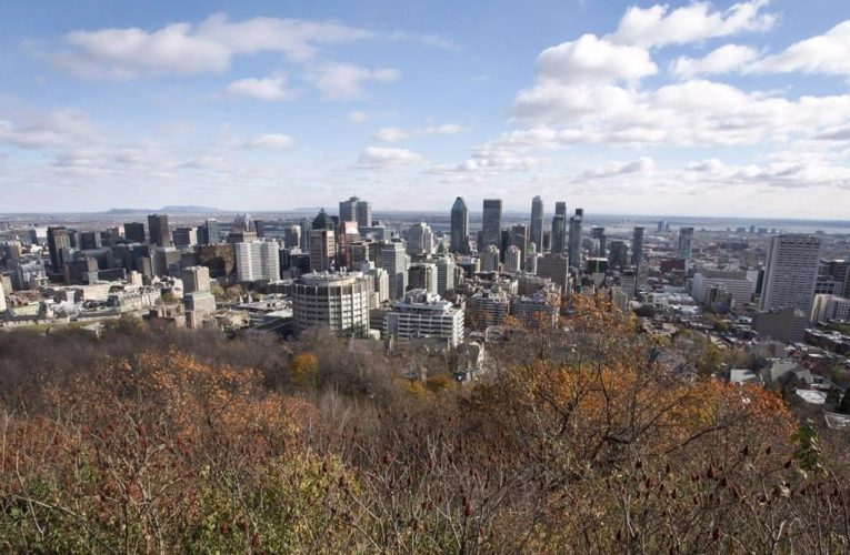 Quebec office buildings can gradually reopen with coronavirus measures in place starting Saturday