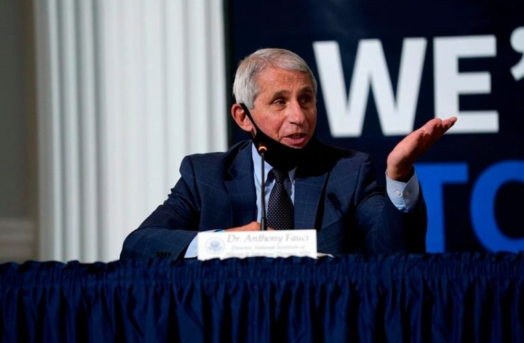 Drugmakers will have tens of millions of COVID-19 vaccine doses by early 2021: Fauci