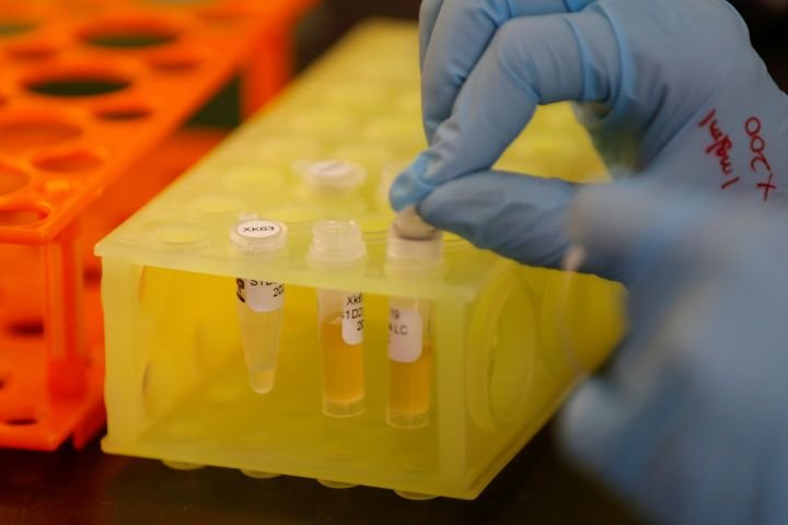 Researchers hope manufactured antibodies could help treat COVID-19