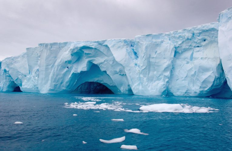 Coronavirus spreads to every continent as 1st cases reported in Antarctica
