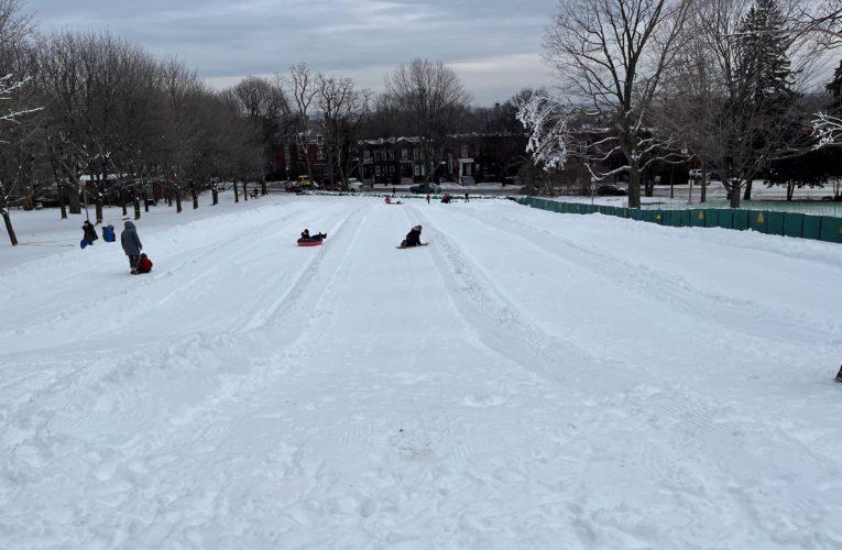 Montreal doctors warn sledding can be dangerous as injuries spike