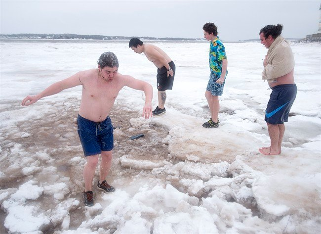 Polar bear swimmers encouraged to take icy dip at home amid pandemic