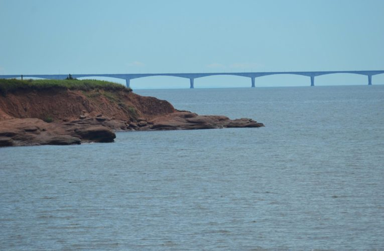 Prince Edward Island looking to ease restrictions amid low COVID-19 infection rate