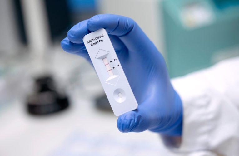 Rapid antigen tests unreliable in asymptomatic COVID-19 cases: study