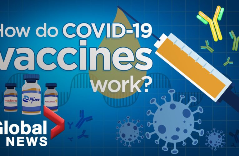How COVID-19 vaccines work as young adults in Quebec remain hesitant to get jab