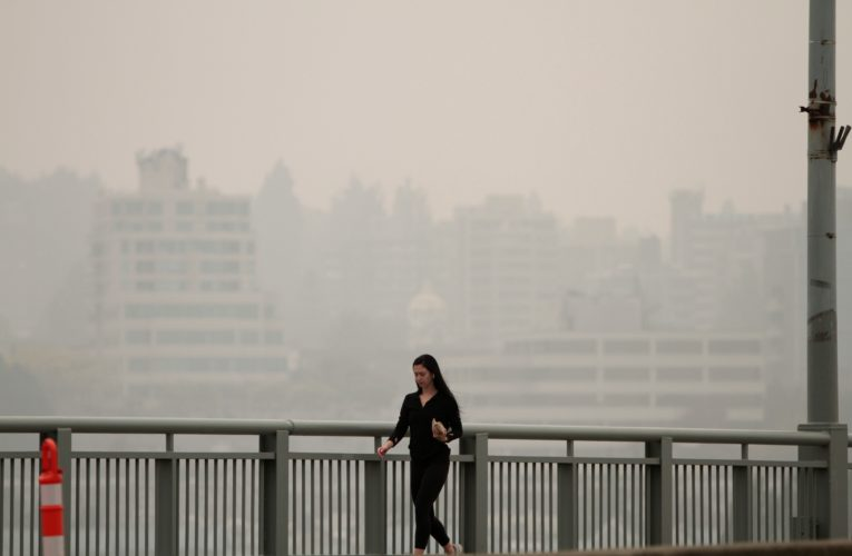 The particles, gases and organisms in wildfire smoke — and what they mean for your health