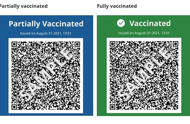 B.C.'s vaccine card comes into effect Monday. Here's what you need to know